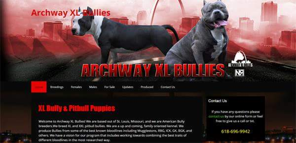 breederdesigns.com - archwayxlbullies