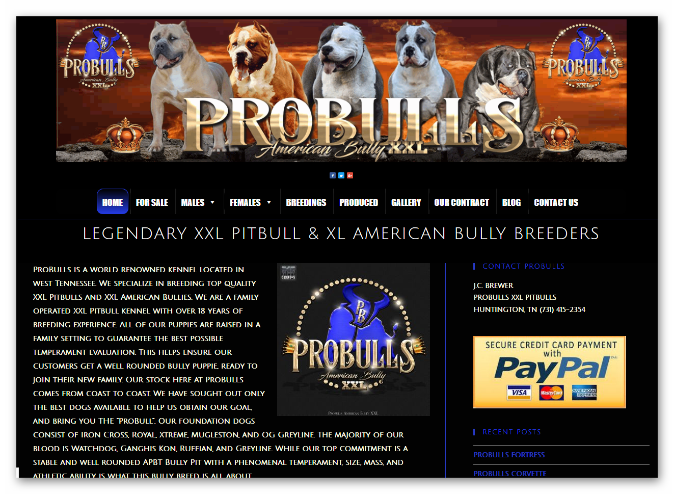 breederdesigns.com - probulls