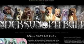 Draft of Anderson Pit Bulls & Bullies 1